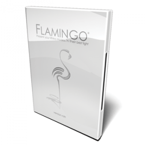 McNeel Flamingo Box Art